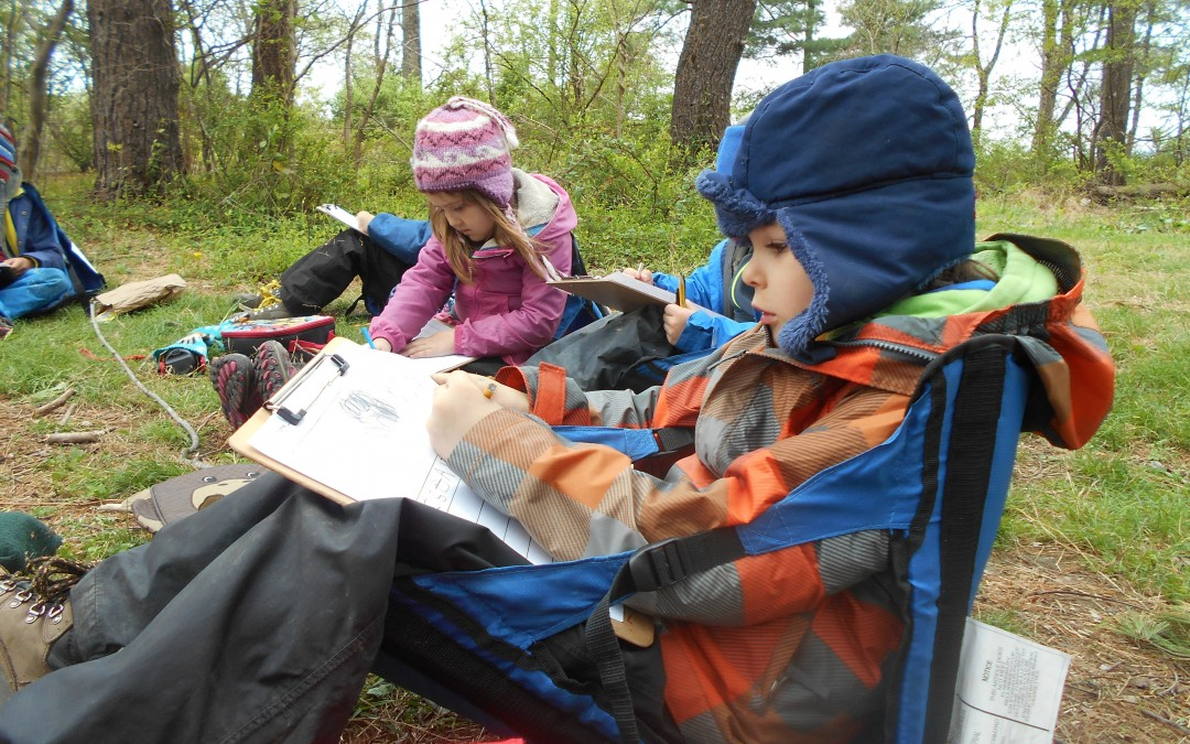 children writing in their nature journals on Forest Fridays at Ridge and Valley Charter School